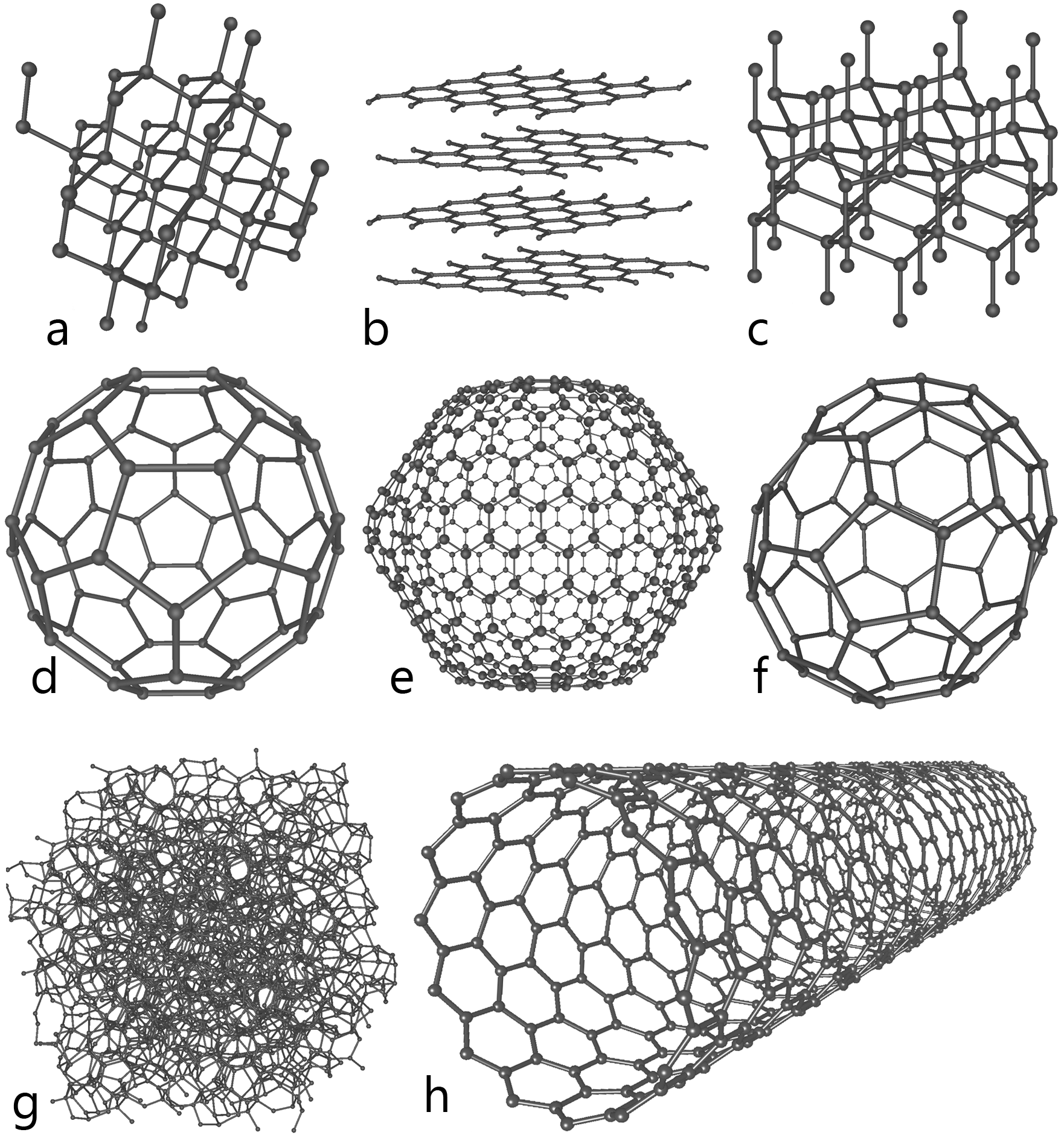 Various allotropes (structural variations) of carbon (joined with itself).  Carbon-based molecules exhibit great variety ... even when limited to only carbon! Image: Created by Michael Ströck, available at http://en.wikipedia.org/wiki/Allotropes_of_carbon